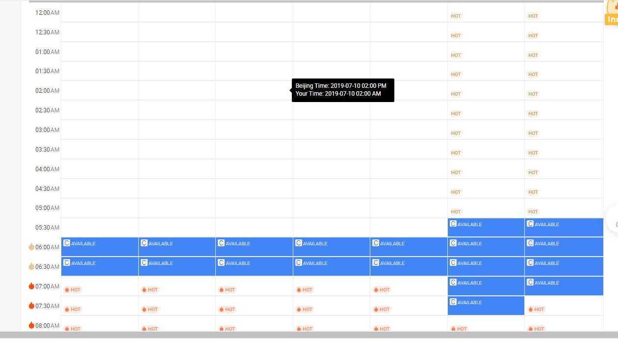 VIPKid schedule example